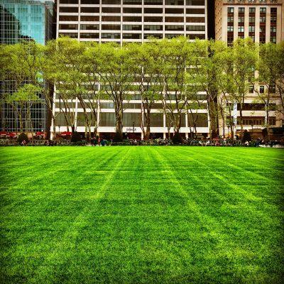 Bryant Park Lawn